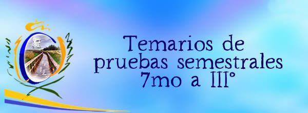 TEMARIOS PRUEBAS SEMESTRALES 7mo a III°