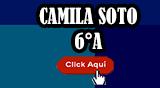 UNA AMISTAD DIFERENTE (Camila Soto 6°A)