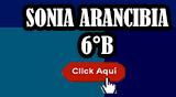 LUCIA LA NIÑA MINUSVÁLIDA  (Sonia Arancibia 6°B)