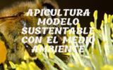 """Apicultura """"Modelo sustentable con el Medio Ambiente"""""""
