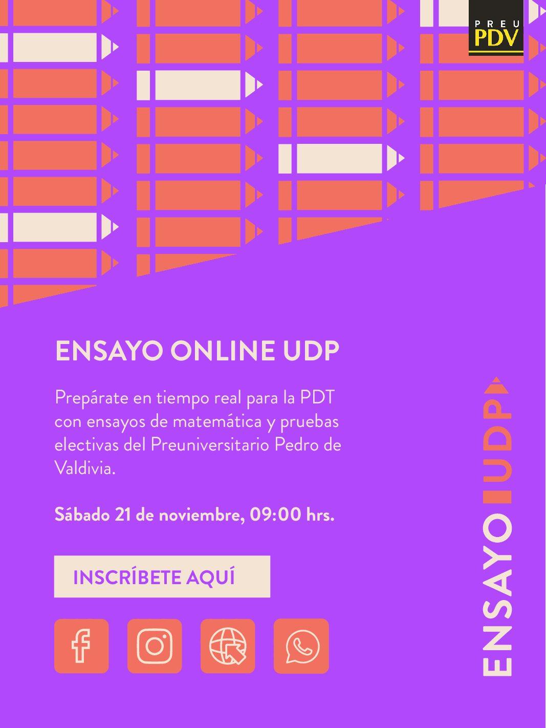 Ensayo UDP Online